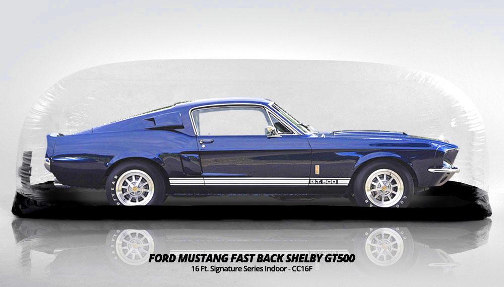 carcapsuleblackfloor-ford-mustang-fast-back-shelby-gt500.jpg