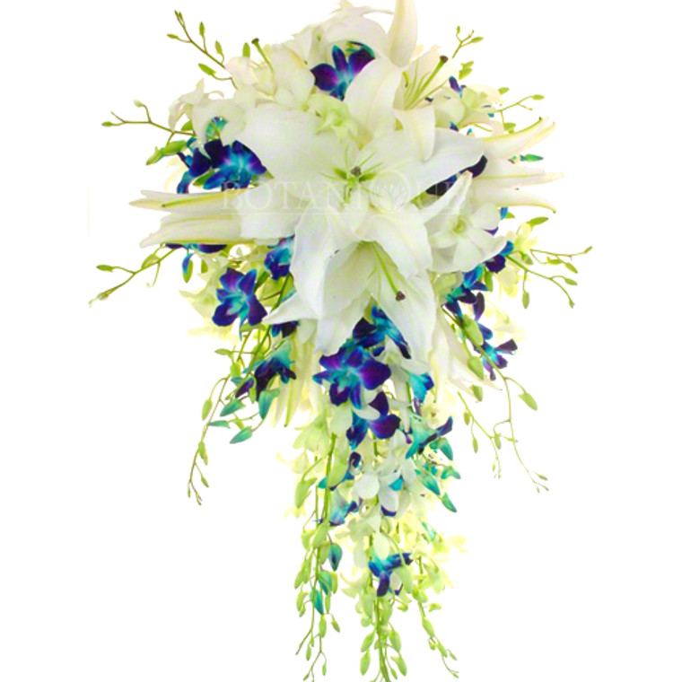 Blue orchid an white oriental lily cascade bridal bouquet extra large