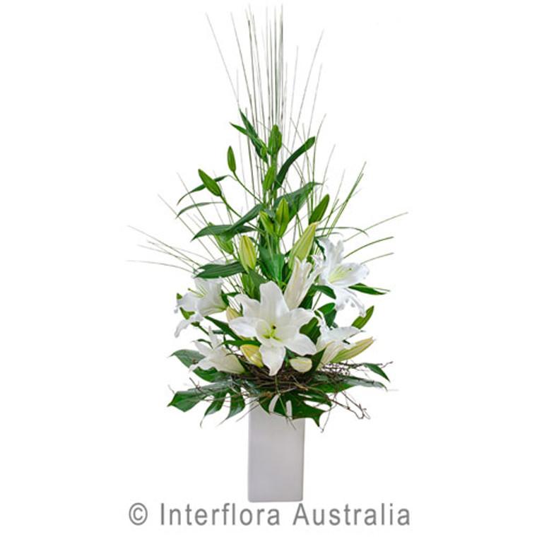 Elegant white flower arrangement in ceramic pot for Gold Coast Delivery today.
