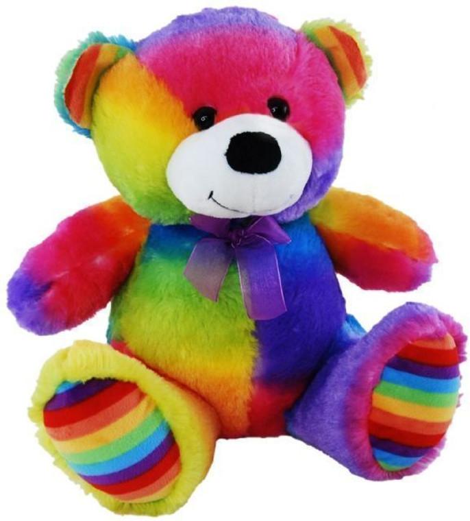 Rainbow Bear 23cm