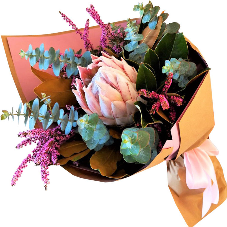 King Protea Gift Wrapped