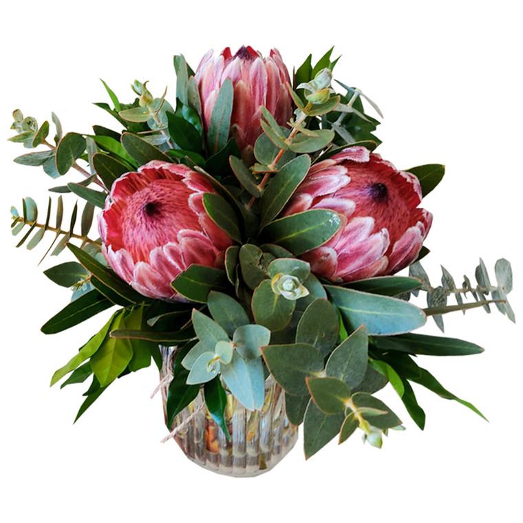 MARKET SPECIAL - Proteas in Vase