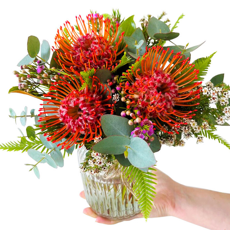 MARKET SPECIAL - Protea Pin Cushions in Vase