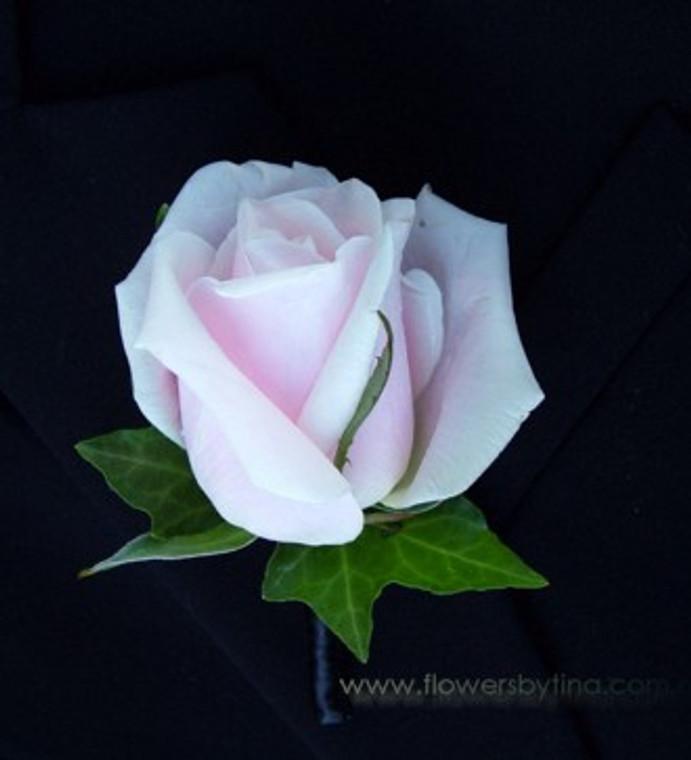 Pale pink rose buttonhole Jacob - Botanique Florist Gold Coast
