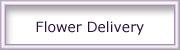 00-flower-delivery.jpg