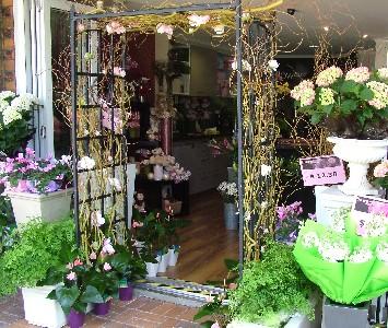 our-front-door-botanique.jpg