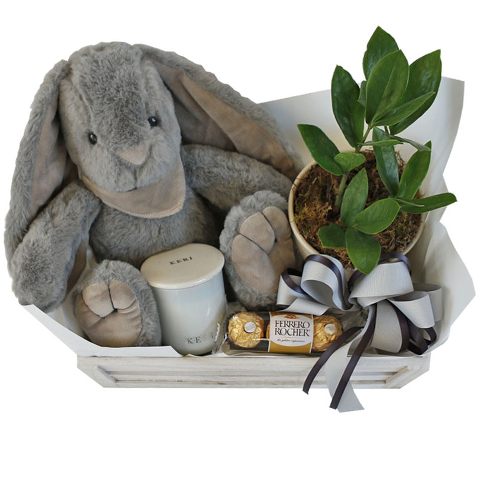 thumper-grey-with-jelly-bunny-27473.1596687720.jpg