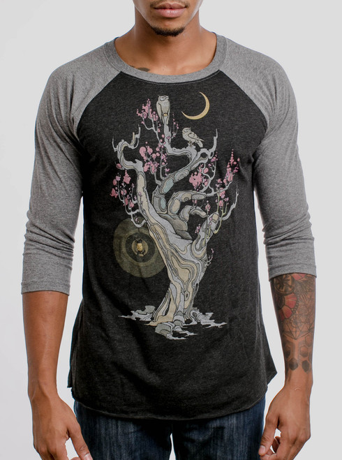 Night Owls - Multicolor on Heather Black and Grey Triblend Raglan