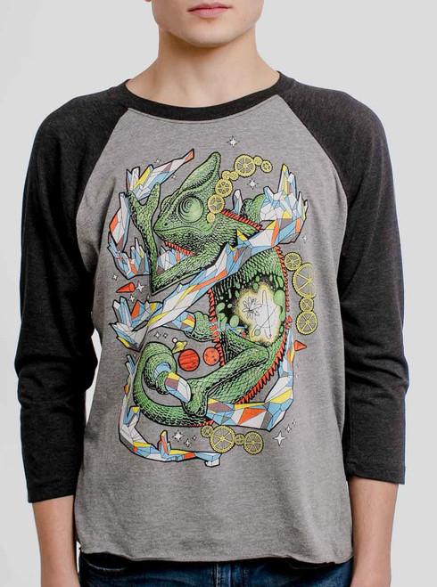 Chameleon - Multicolor on Heather Grey and Black Triblend Raglan