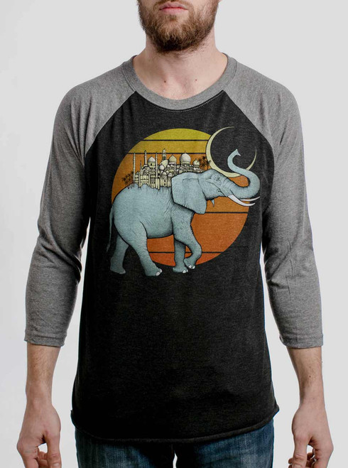 Elephant City - Multicolor on Heather Black and Grey Triblend Raglan