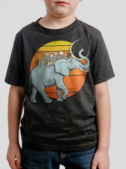 Elephant City - Multicolor on Heather Black Triblend Youth T-Shirt
