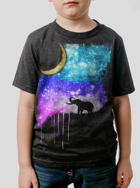 Elephant Moon - Multicolor on Heather Black Triblend Youth T-Shirt