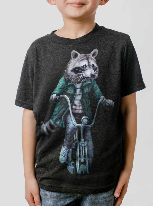 Raccoon - Multicolor on Heather Black Triblend Youth T-Shirt