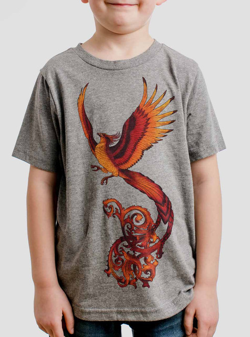 Phoenix - Multicolor on Heather Grey Triblend Youth T-Shirt
