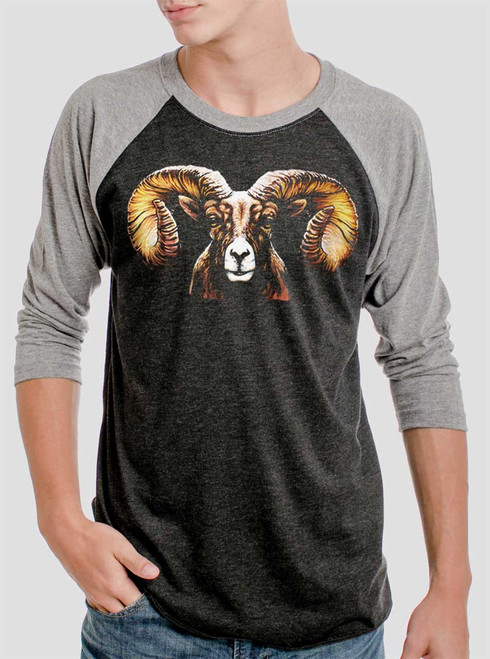 Ram's Head - Multicolor on Heather Black and Grey Triblend Raglan