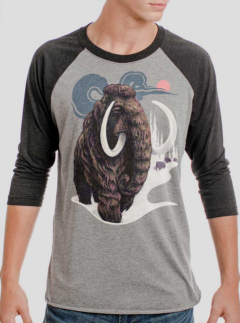 Mammoth - Multicolor on Heather Grey and Black Triblend Raglan