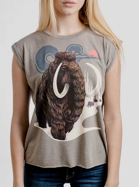 Mammoth - Multicolor on Heather Stone Women's Rolled Cuff T-Shirt