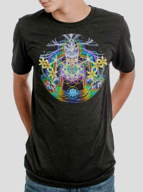 Seeds of Life - Multicolor on Heather Black Triblend Mens T Shirt