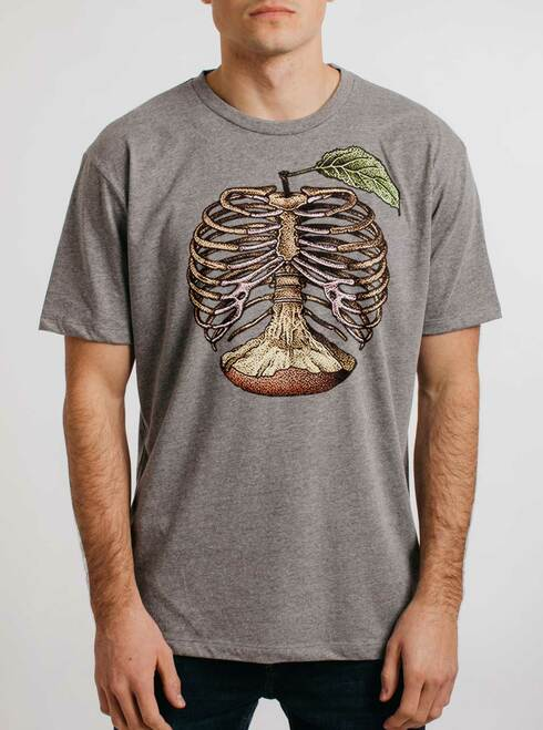 Apple a Day - Multicolor on Heather Grey Triblend Mens T Shirt