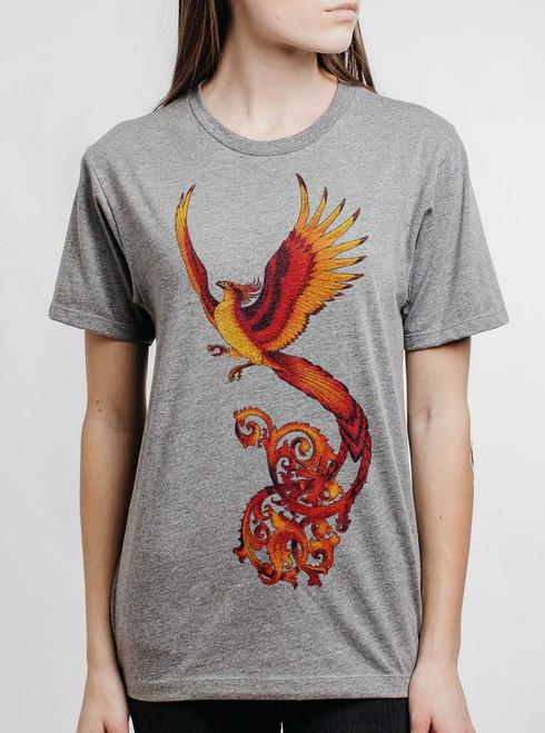 Phoenix - Multicolor on Heather Grey Triblend Womens Unisex T Shirt