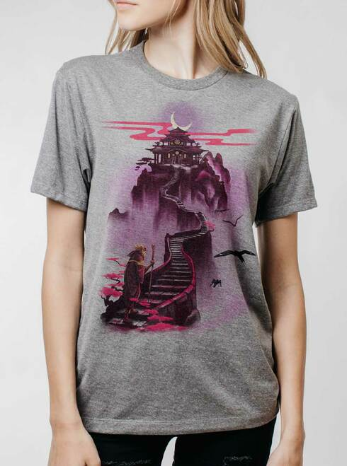 Ascending - Multicolor on Heather Grey Triblend Womens Unisex T Shirt