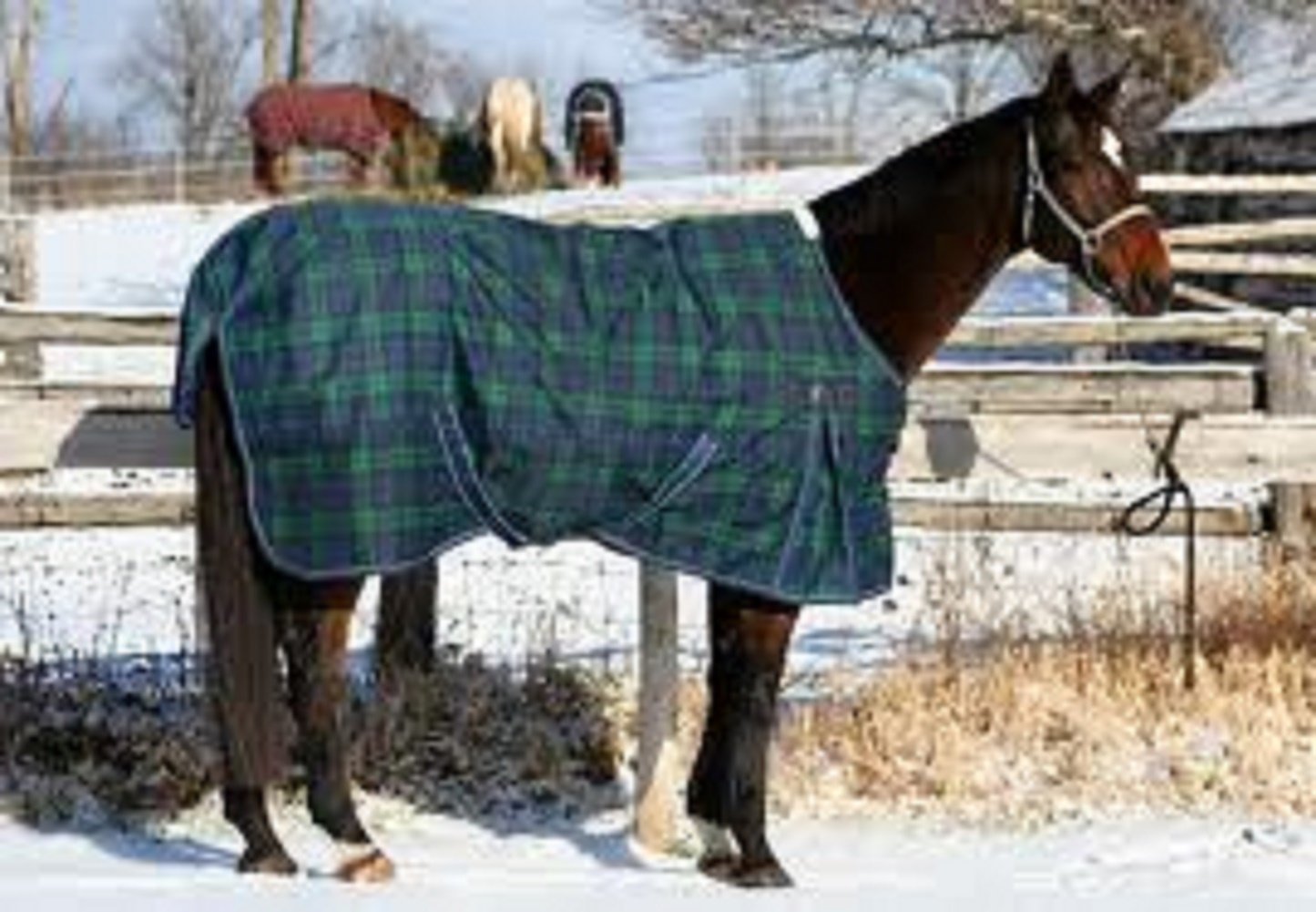 Orican Turnout Sheet Blackwatch Plaid 57""