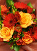 """A red and orange bouquet based on our best seller """"lambton"""" include freesias, roses and gerberas"""