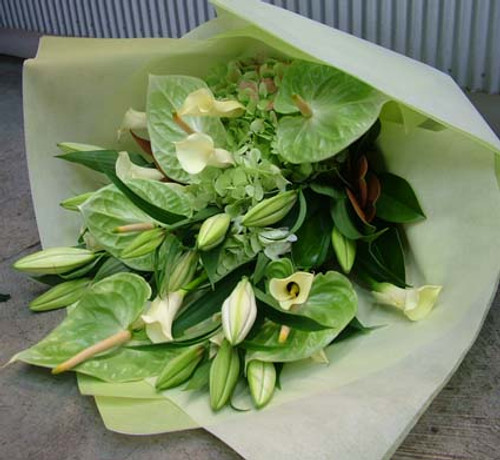 Beautiful White Oriental lilies and green antheriums. When callas are in seaon we include these, otherwise we will include freesias.