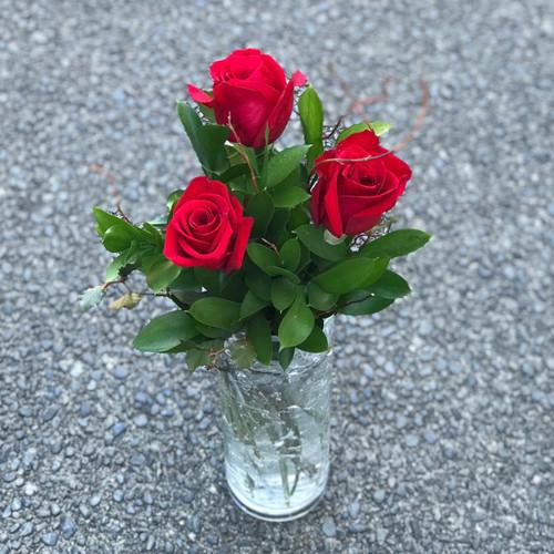 Three roses and foliage
