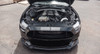 Mustang S550 GT G2 Tuner Kit (Wholesale Direct)
