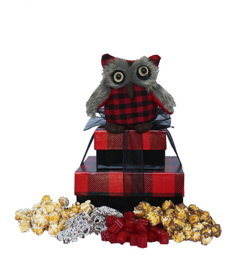 Buffalo Check Owl - Set of 2 Boxes with Owl Case Pack 4 - with Gourmet Treats