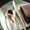 thumbnail image of Bamboo Copper 18/10 Stainless Steel 5 pcs Place Setting, solid handle