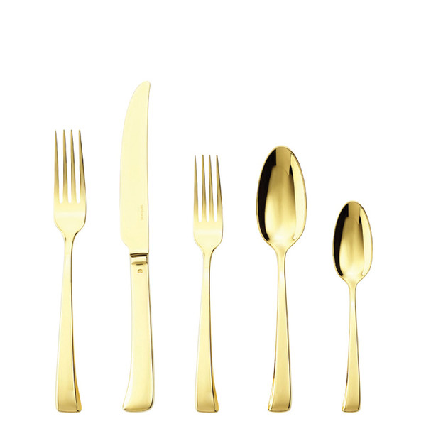 Imagine Gold 18/10 Stainless Steel 5 Pcs Place Setting (solid handle knife)