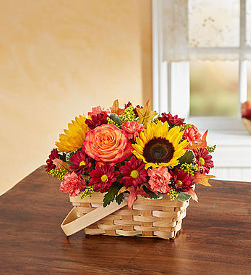 Fields of Europe for Fall Basket 2018