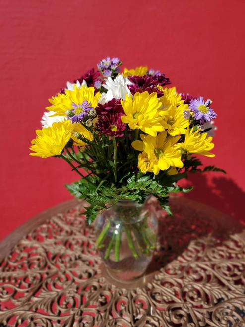 Mixed Daisy Vase