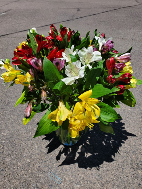 100 Blooms of Peruvian Lilies