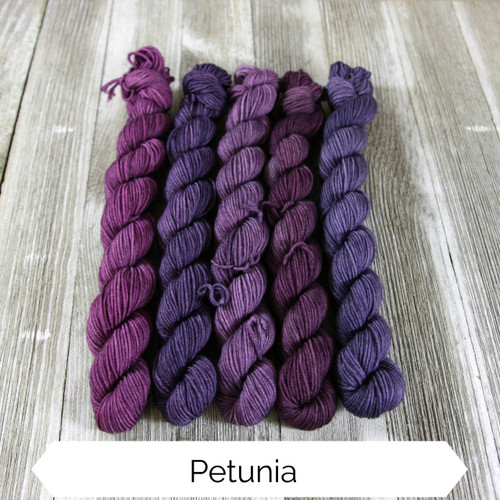 Color Shift Pack - Petunia