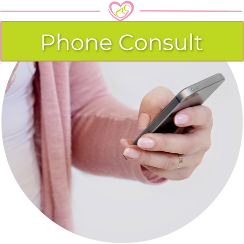 Telephone Lactation Consultation Services