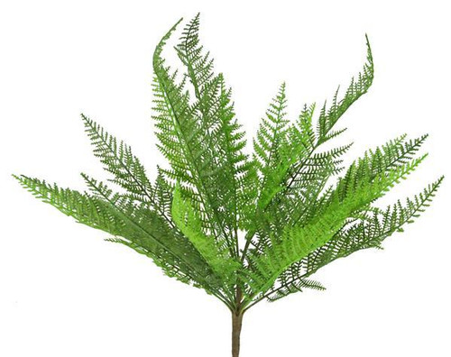 "19"" Lace Fern Bush"