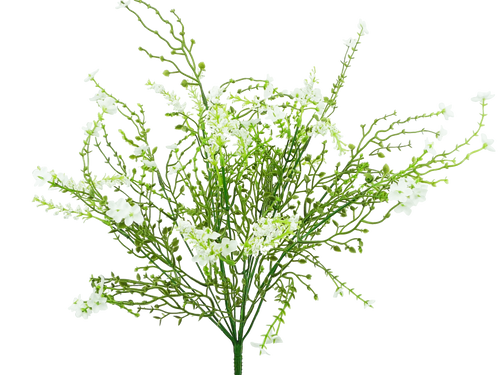 Baby's Breath Filler Bush: White