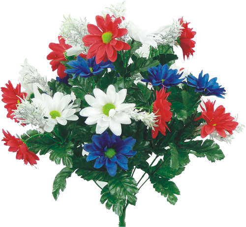 Red/Wht/Blue Daisy Mix Bush