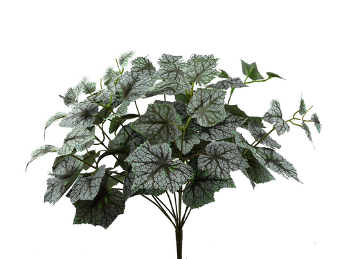 Variegated Maple Leaves Bush: Purple/Grn