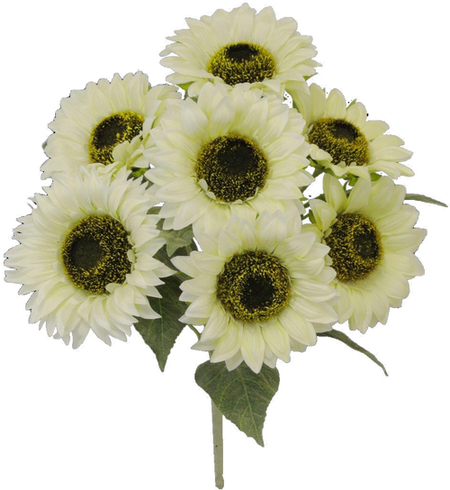 "18"" Sunflower Bush: Cream (7)"