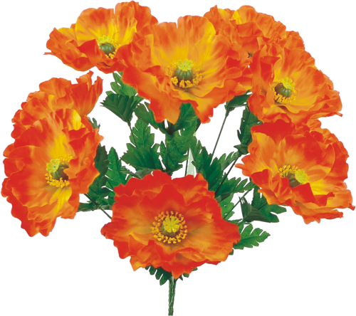 "19"" Orange Poppy Bush"