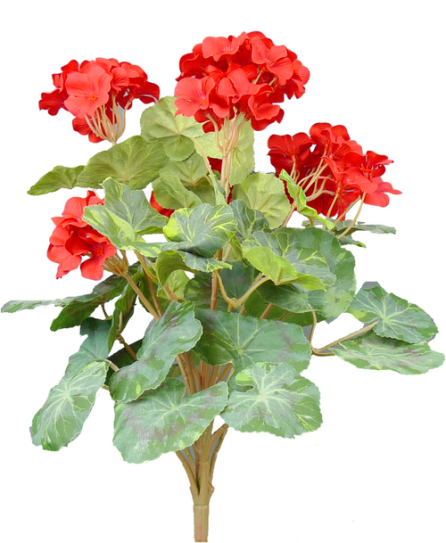 "19"" Geranium Bush: Red"