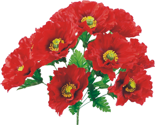 "19"" Red Poppy Bush"
