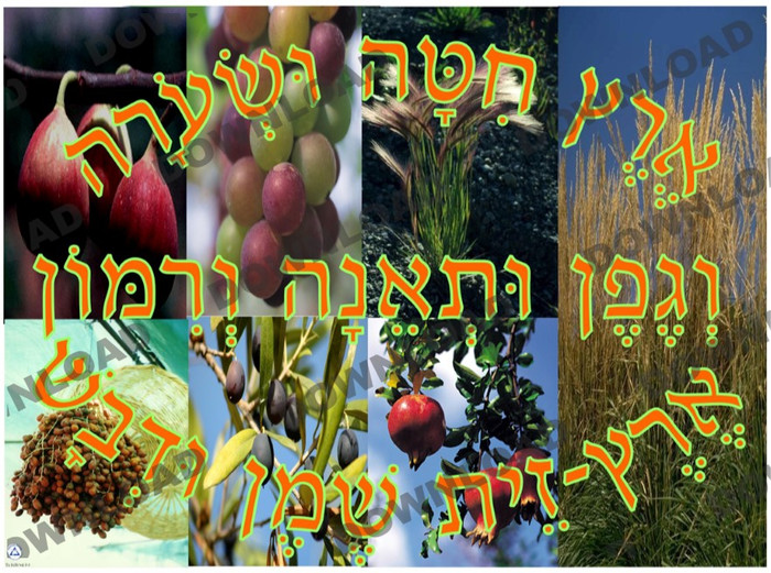 Eretz Chita Poster 2 (a downloadable item)