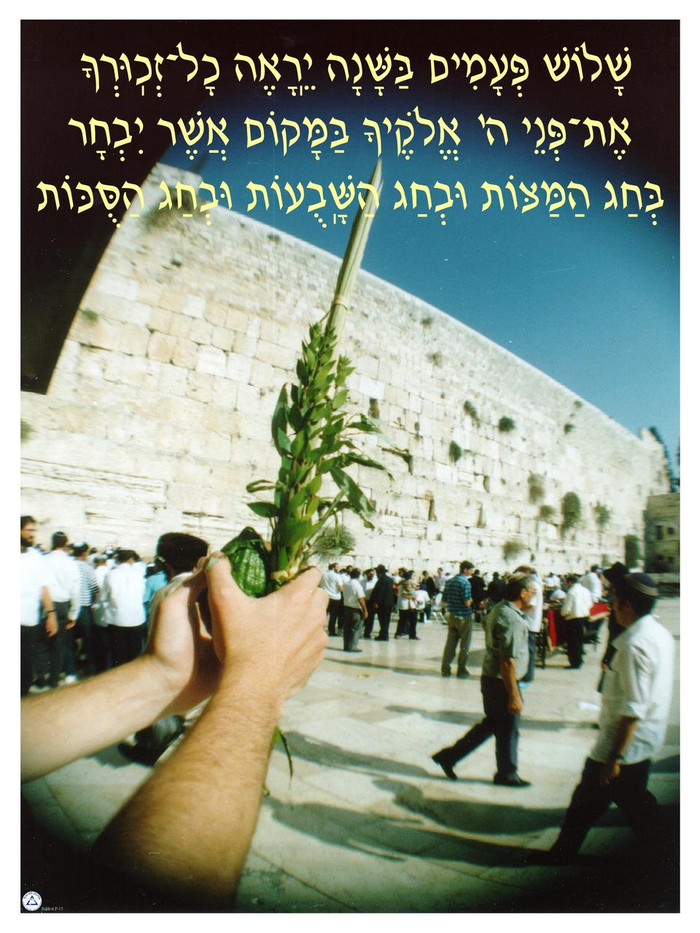 Shalosh Pa'amim Poster