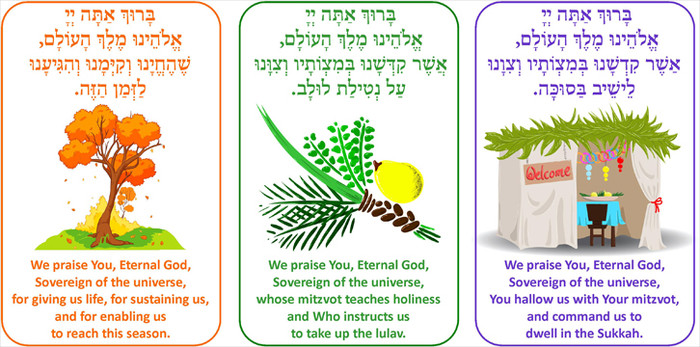 Sukkot Brachot Display