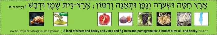 Eretz Chita Bookmark